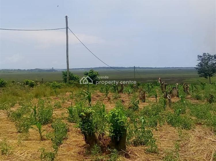 100 Acres Land, Bukaya, Jinja, Eastern Region, Land for Sale