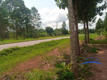 Multi Purpose Land, Kalungu, Central Region, Mixed-use Land for Sale