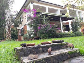 Beautiful 5 Bedroom Storied House, Muyenga, Makindye, Kampala, Central Region, House for Rent