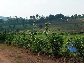 40 Acres of Land, Maya, Wakiso, Central Region, Land for Sale